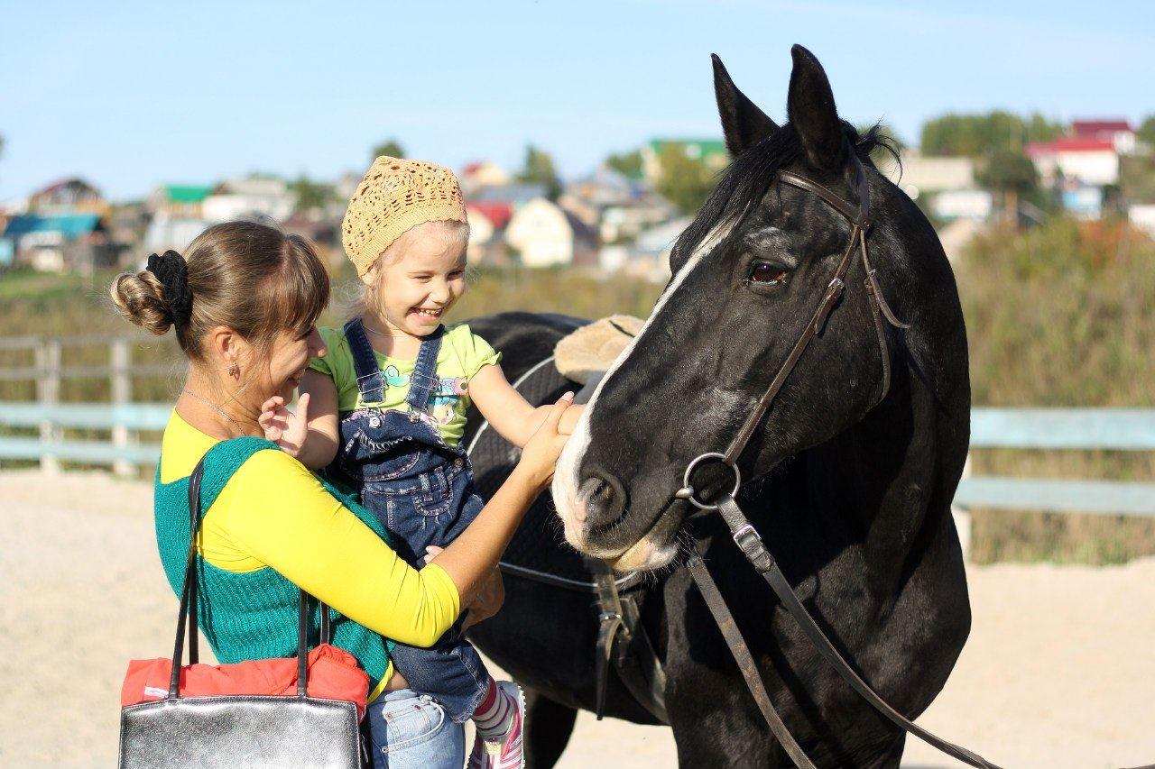 Иппотерапия и адаптивная верховая езда в системе адаптивной физической культуры