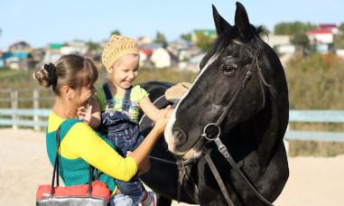 Иппотерапия. лошадь как инструмент терапевтического воздействия на организм всадника